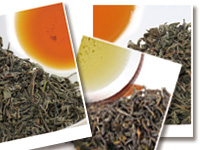 Limited offer : five Japanese black teas