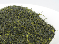 Sencha from Nearai, Shizu-7132 cultivar