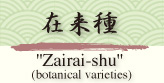 在来種 Zairai-shu (botanical varieties)